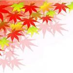 【行ってよかった! 紅葉名所ランキング2016、トップは京都の「●●●」に】京都求人.comお役立ち情報 イメージ
